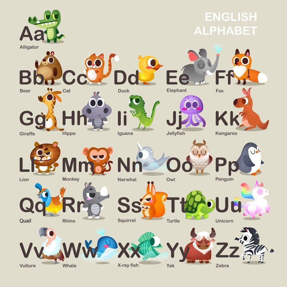 Hình ảnh bảng chữ cái tiếng Anh có ví dụ